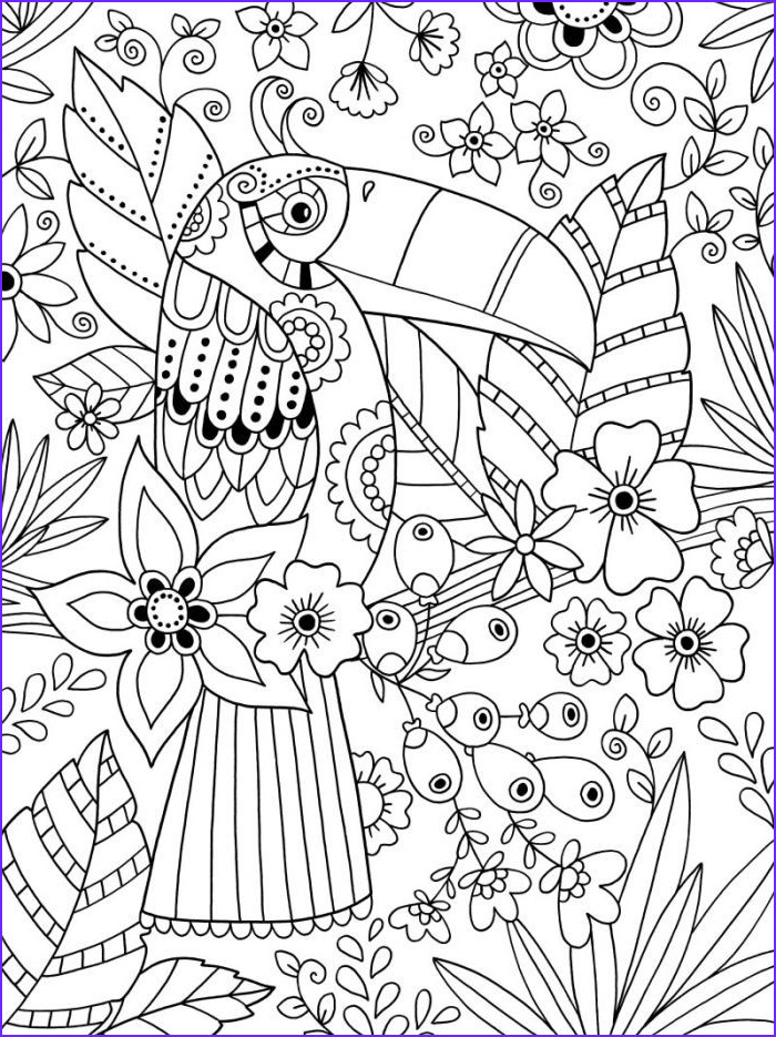Coloring Pictures for Adults Elegant Gallery toucan Adult Colouring