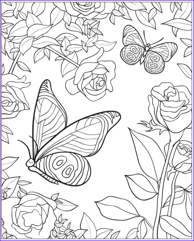 Coloring Pictures Of Flowers and butterflies Cool Photography Wel E to Dover Publications Creative Haven Beautiful