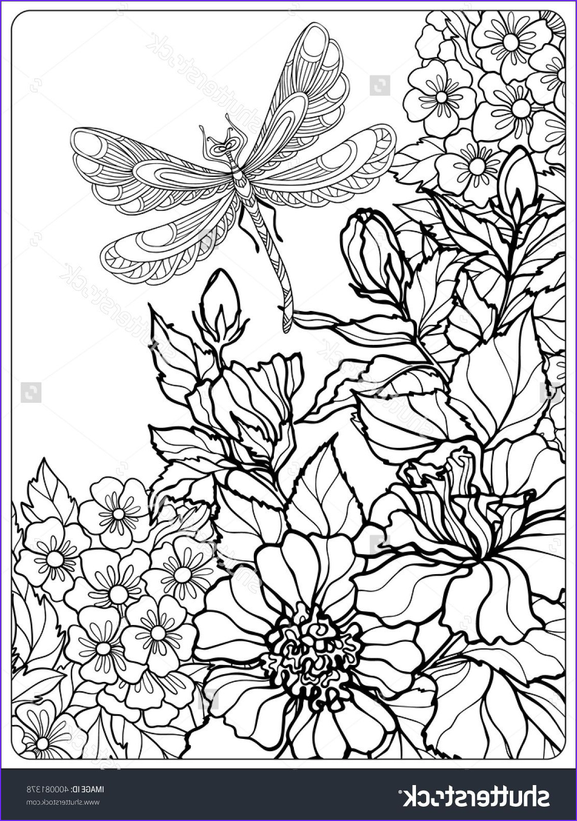 Coloring Pictures Of Flowers and butterflies New Photos Decorative Flowers Birds and butterflies Coloring Book