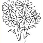 Coloring Pictures Of Flowers Beautiful Collection Free Printable Flower Coloring Pages For Kids Best