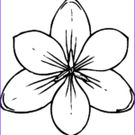 Coloring Pictures Of Flowers Beautiful Stock Flower Coloring Pages 3