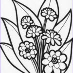 Coloring Pictures Of Flowers Cool Images Flower Coloring Pages