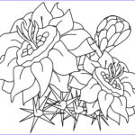 Coloring Pictures Of Flowers Cool Photography Free Printable Flower Coloring Pages For Kids Best