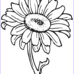 Coloring Pictures Of Flowers Inspirational Image Free Printable Flower Coloring Pages For Kids Best