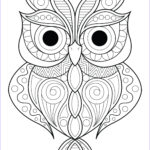 Coloring Pictures Of Owl Inspirational Images Owl Simple Patterns 2 Owls Adult Coloring Pages