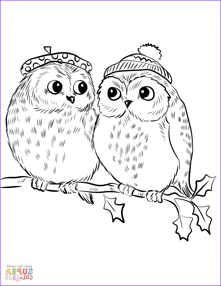 Coloring Pictures Of Owl Unique Images Couple Of Cute Owls Coloring Page