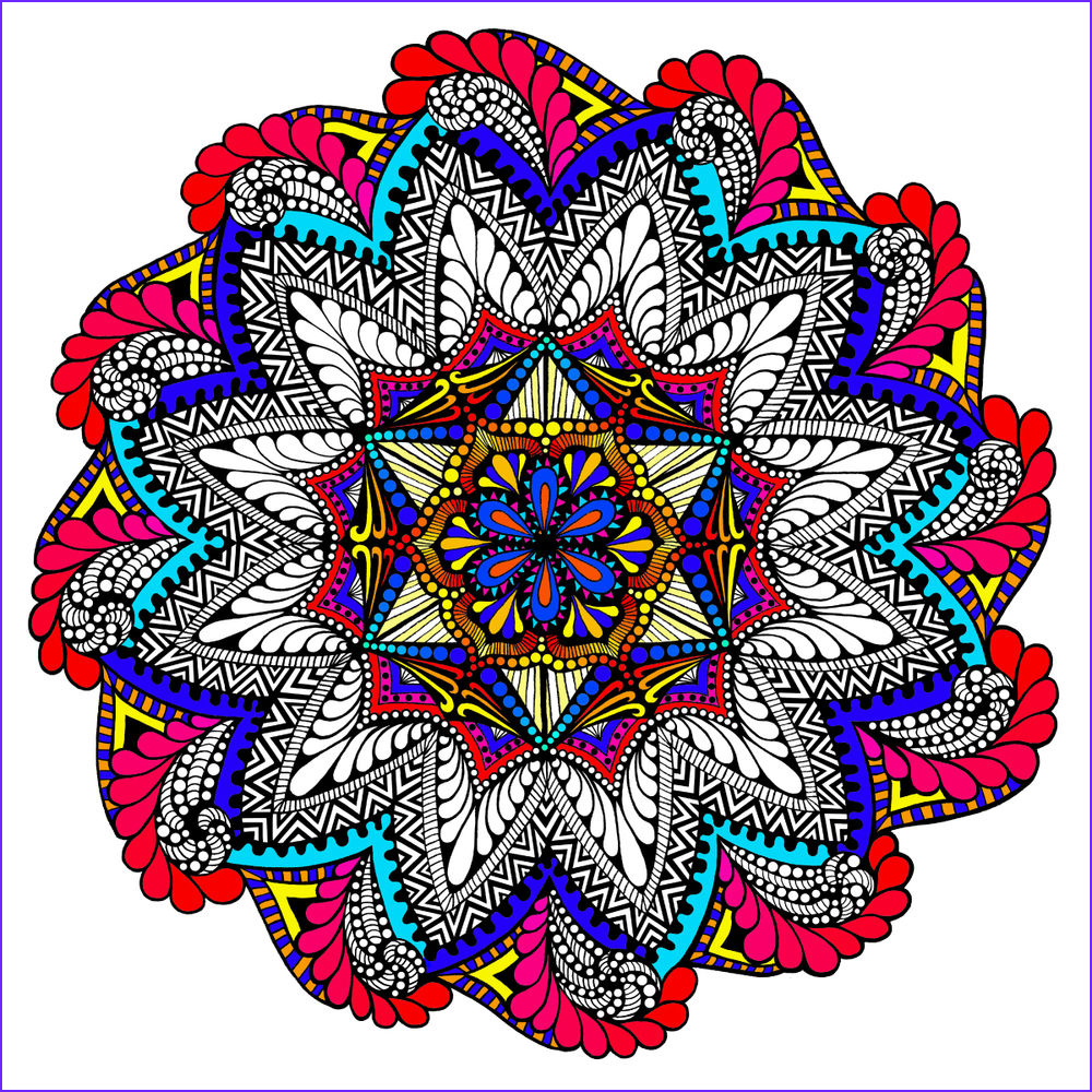 Coloring Poster Luxury Image Paisley Bloom Mandala 22x22 Inch Coloring Poster