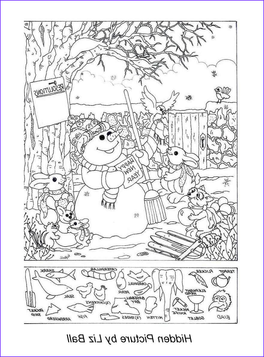 Coloring Puzzles Beautiful Photography New Year S Day Hidden Picture Puzzle Coloring Page