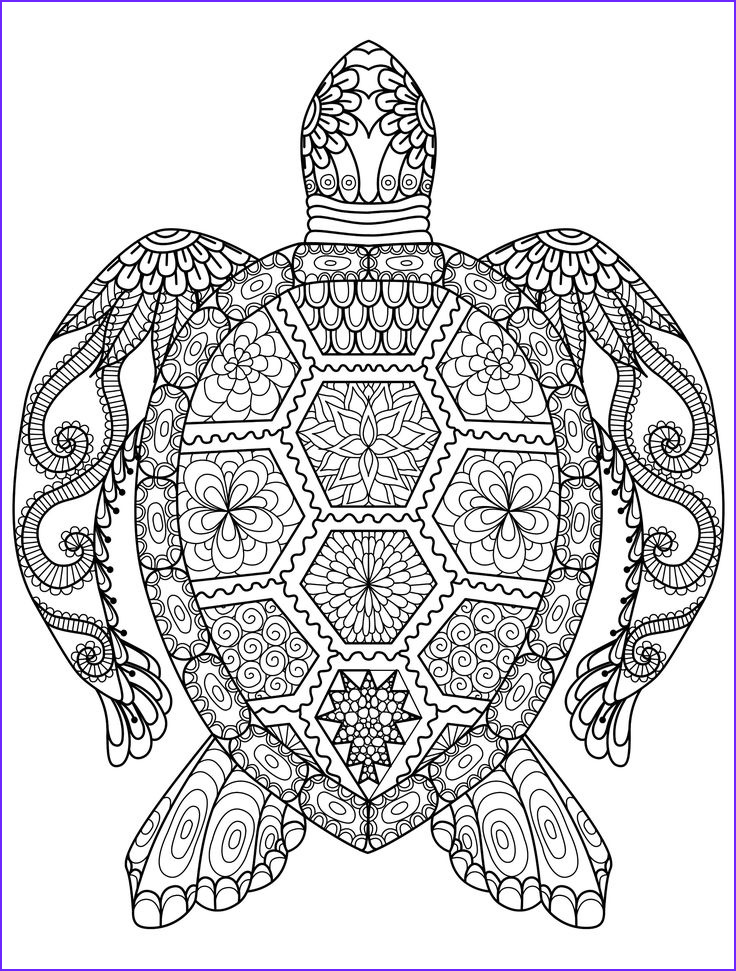 Coloring Puzzles for Adults Cool Gallery 20 Gorgeous Free Printable Adult Coloring Pages
