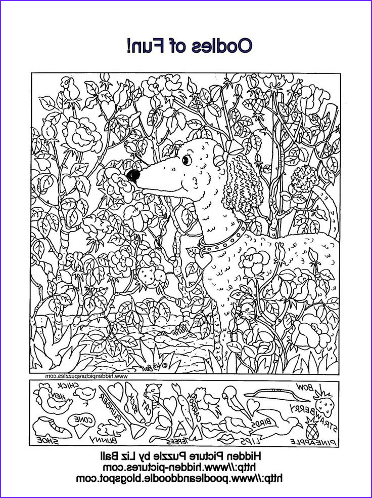 Coloring Puzzles for Adults Unique Images Hidden Picture Puzzle and Coloring Page Featuring A Poodle