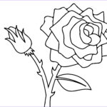 Coloring Roses Beautiful Gallery Free Printable Roses Coloring Pages For Kids