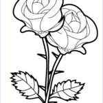 Coloring Roses Beautiful Photos Free Printable Roses Coloring Pages For Kids