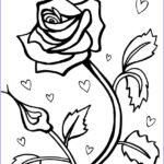 Coloring Roses Beautiful Stock Free Printable Roses Coloring Pages For Kids
