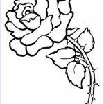 Coloring Roses Cool Images Free Printable Roses Coloring Pages For Kids