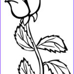 Coloring Roses Elegant Photos Printable Rose Coloring Pages For Kids