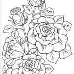 Coloring Roses Inspirational Collection The Gallifrey Crafting Pany