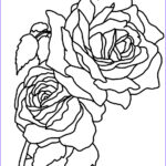 Coloring Roses Inspirational Photos Flower Coloring Pages