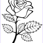 Coloring Roses Inspirational Photos Free Printable Roses Coloring Pages For Kids