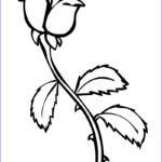 Coloring Roses Inspirational Stock Roses Coloring Pages To And Print For Free