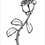 Coloring Roses Unique Stock Free Printable Roses Coloring Pages For Kids