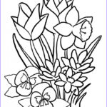 Coloring Sheets For Adults Flowers Awesome Gallery Free Printable Flower Coloring Pages For Kids Best
