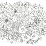 Coloring Sheets For Adults Flowers Best Of Gallery Adult Coloring Pages Flowers Plants Garden