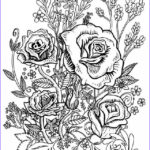 Coloring Sheets For Adults Flowers Cool Collection Four Free Flower Coloring Pages For Adults