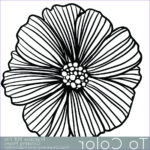 Coloring Sheets For Adults Flowers Cool Images Printable Flower Coloring Page For Adults Pdf Jpg Instant