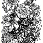Coloring Sheets For Adults Flowers New Images Four Free Flower Coloring Pages For Adults