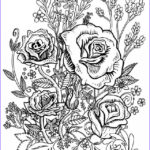 Coloring Sheets For Adults Flowers New Images Freebies Nivea & L Oreal Samples Adult Coloring Pages