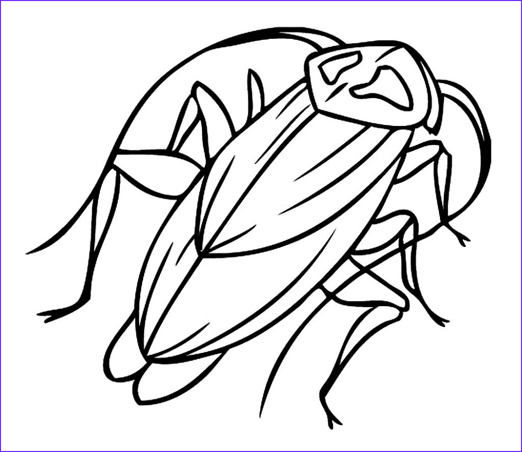 Coloring Sheets for Kids.com Unique Image Free Printable Cockroach Coloring Pages for Kids