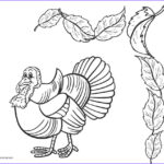 Coloring Sheetsd Cool Stock Free Printable Turkey Coloring Pages For Kids