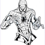 Coloring Spiderman Awesome Images Free Printable Spiderman Coloring Pages for Kids