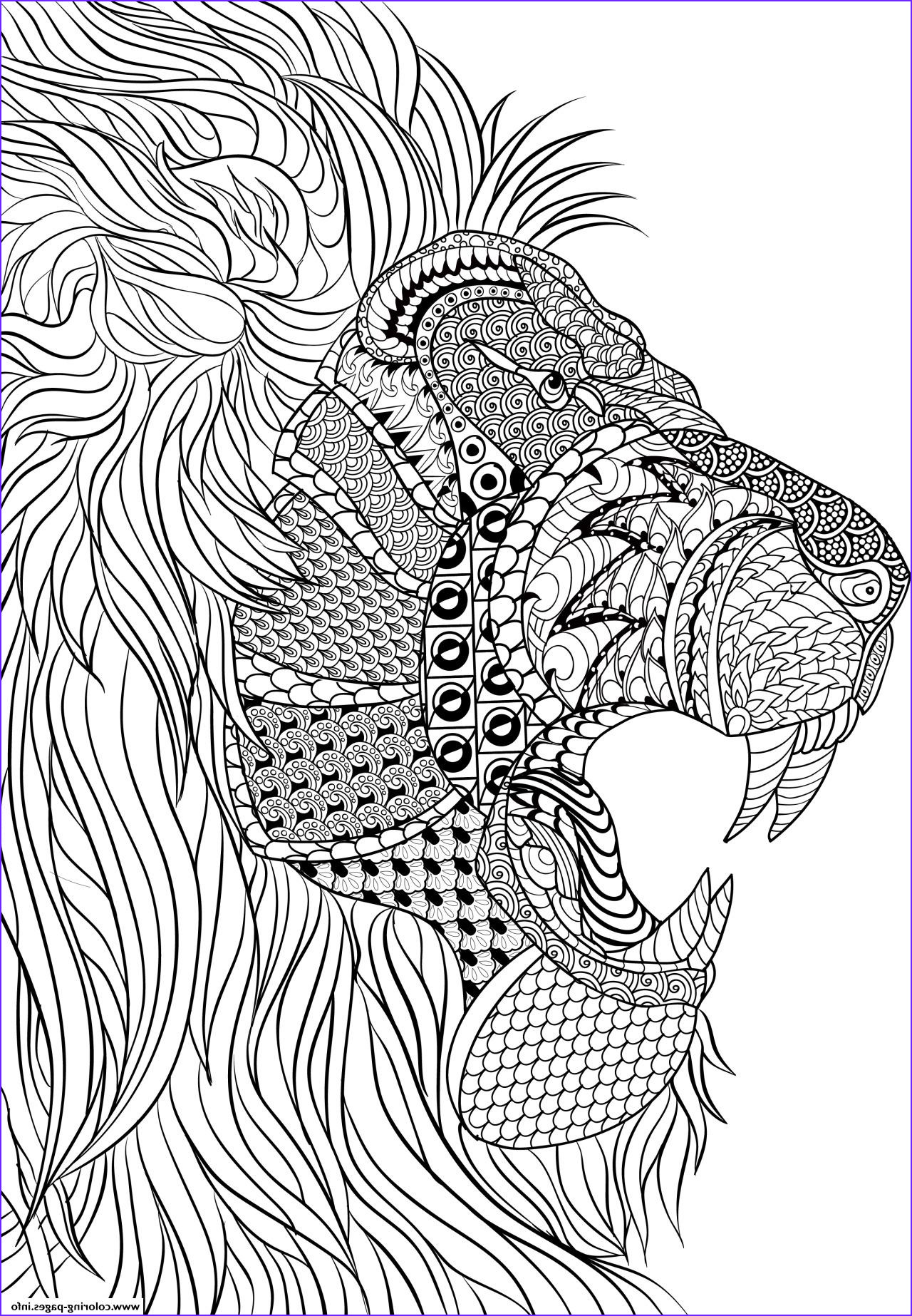 lion adult anti stress printable coloring pages book