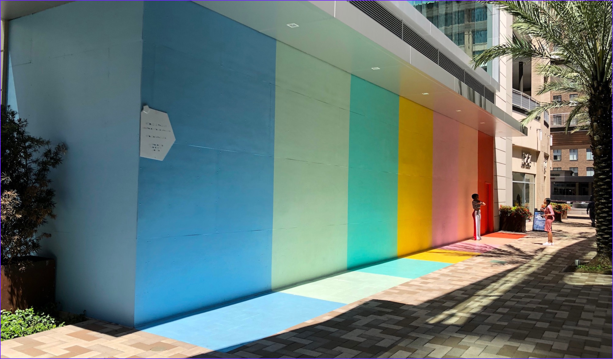 sugar and cloth color wall downtown houston