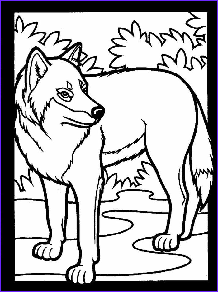 Coloring Wolf Inspirational Photos Wolf Coloring Pages