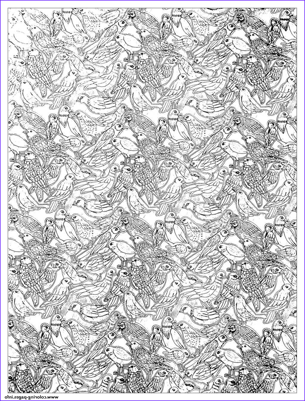 Complicated Coloring Pages for Adults Luxury Photography Adult Plenty Birds Plex Coloring Coloring Pages Printable