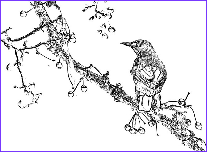 Convert Photo to Coloring Page Elegant Photos Gimp Convert to Coloring Page