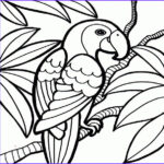 Cool Coloring Pages For Adults Elegant Images Cool Coloring Pages Clipart Best