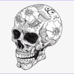 Cool Printable Coloring Pages For Adults Beautiful Collection Vector Library Library Cool Art Skeletons And Spell
