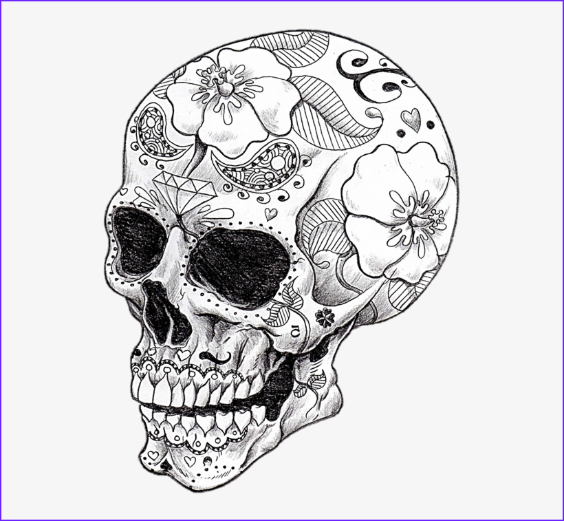 u2q8e6q8t4e6w7q8 vector library library cool art skeletons and spell