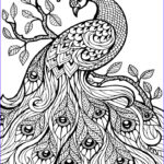 Cool Printable Coloring Pages For Adults Beautiful Gallery Coloring Pages Related Cool Animal Coloring Pages Item