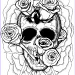 Cool Skull Coloring Pages Beautiful Photography Cfsh 21st Century Doggerel August 2013