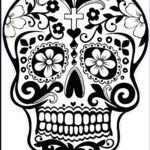 Cool Skull Coloring Pages Elegant Photos Cool Skull Coloring Pages At Getcolorings