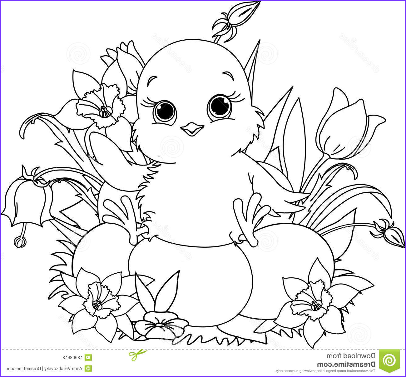 royalty free stock photos happy easter chick coloring page image