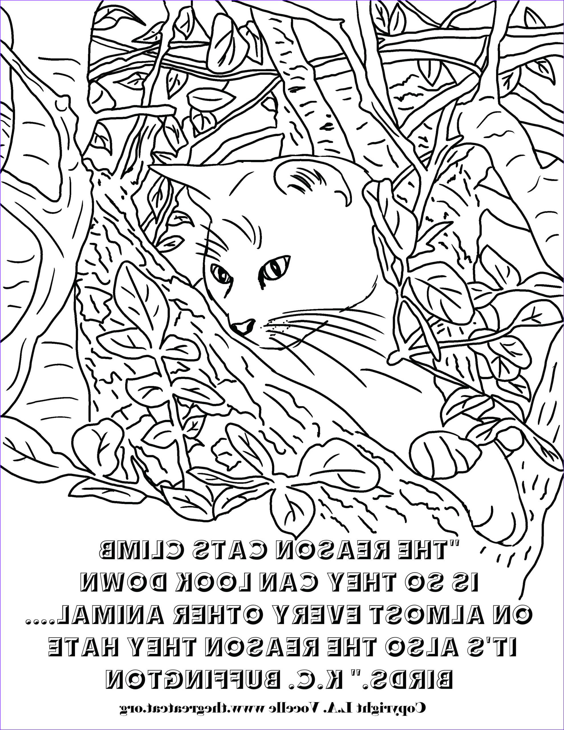 Copyright Free Coloring Pages Unique Images Free Coloring Pages