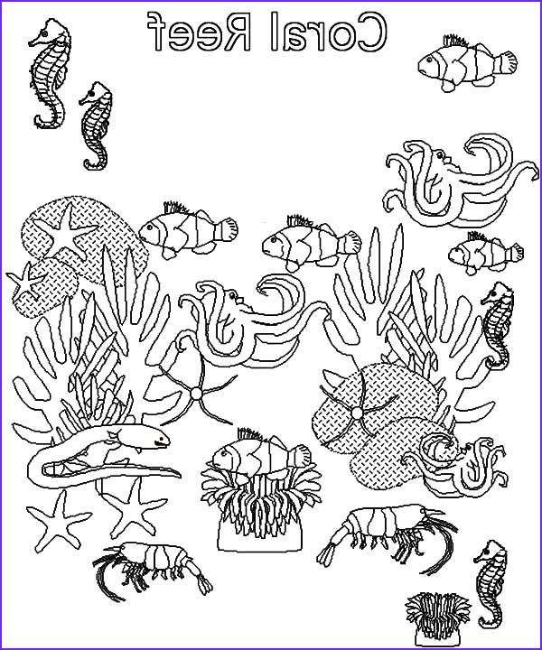 fish in coral reef ecosystem coloring pages
