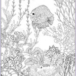 Coral Reef Coloring Page Inspirational Stock Adult Coloring Book Coloring Page With Underwater World