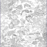 Coral Reef Coloring Page Luxury Collection Great Barrier Reef Coloring Pages Bing Images