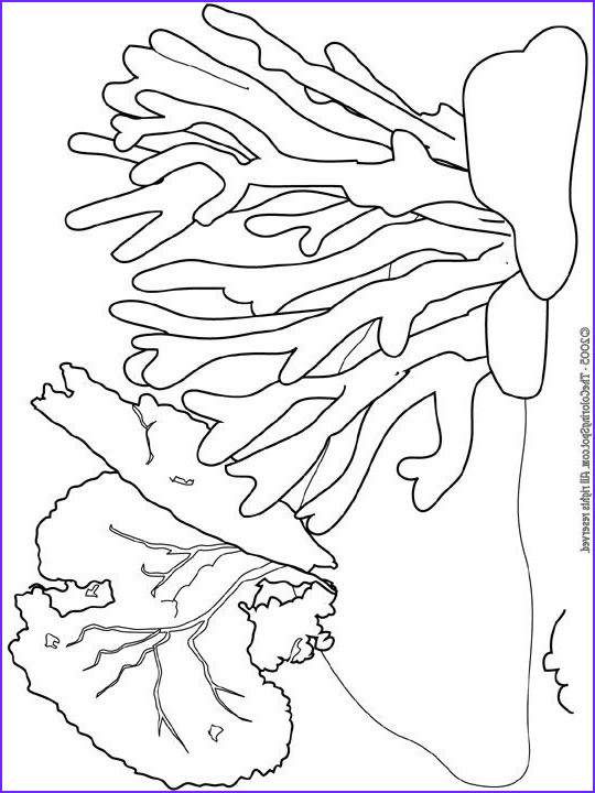 Coral Reef Coloring Page New Images Coral Reef Coloring Pages Educational